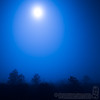 Moon rising over the 5 am fog, Gainesville, Florida